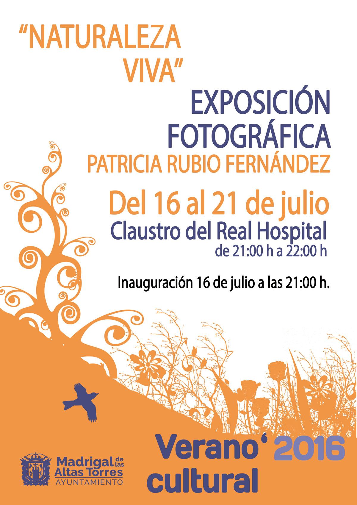 veranocultural2016EXPO2