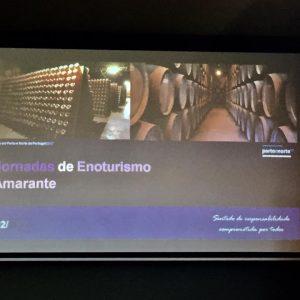 Jornadas_Enoturismo_Amarante_011